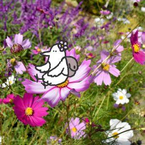 カトリさん、花に囲まれるー浜松フラワーパークへの旅