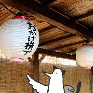 【番外編】カトリさん、伊勢神宮でパワーを頂くはずだったー三重県 伊勢への旅