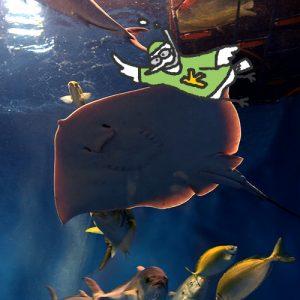 カトリさん、魚にタッチー浜名湖体験学習施設ウォットへの旅