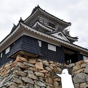カトリさん、天下統一を目指すー浜松城への旅