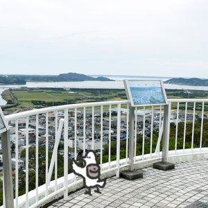 カトリさん、奥浜名湖と街並みを展望するー細江公園への旅