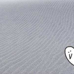 カトリさん、風紋を刻む砂丘へー中田島砂丘への旅