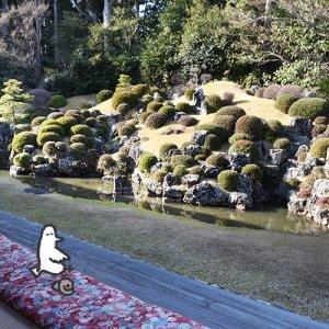 カトリさん、井伊直虎の足跡を辿るー龍潭寺への旅