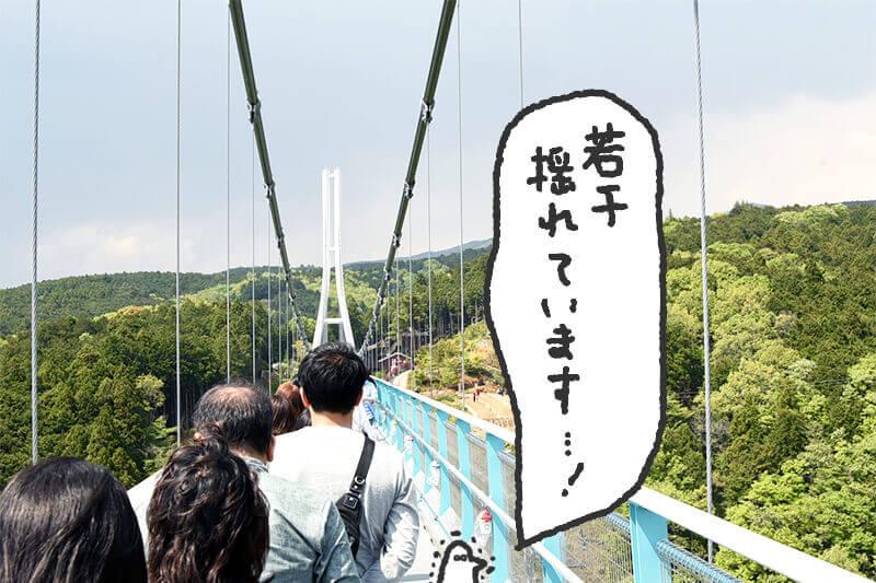 浜松をドライブ!car trip 浜松 三島スカイウォークへの旅