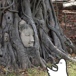 カトリさん、遺跡を巡るー海外旅行 タイへの旅